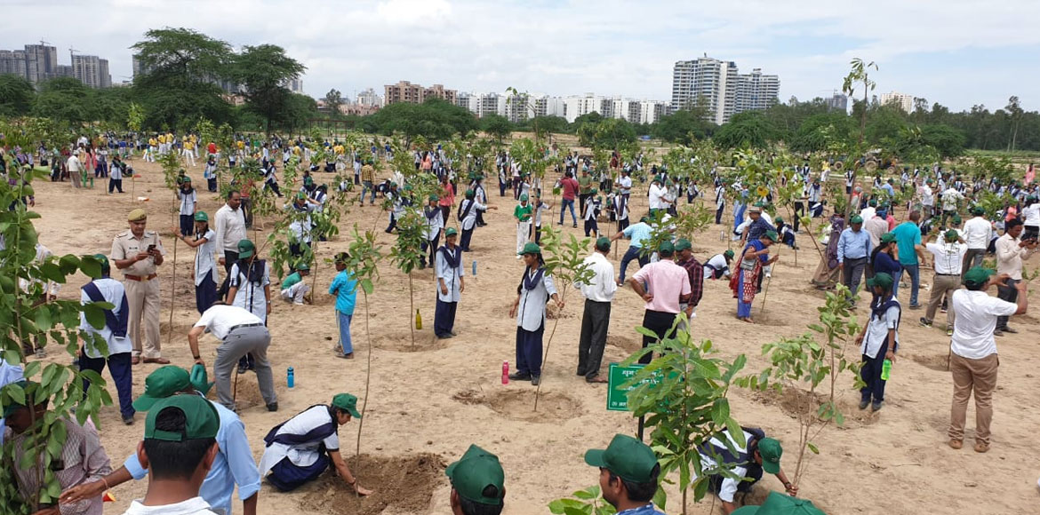 Massive plantation drive carried out in Noida