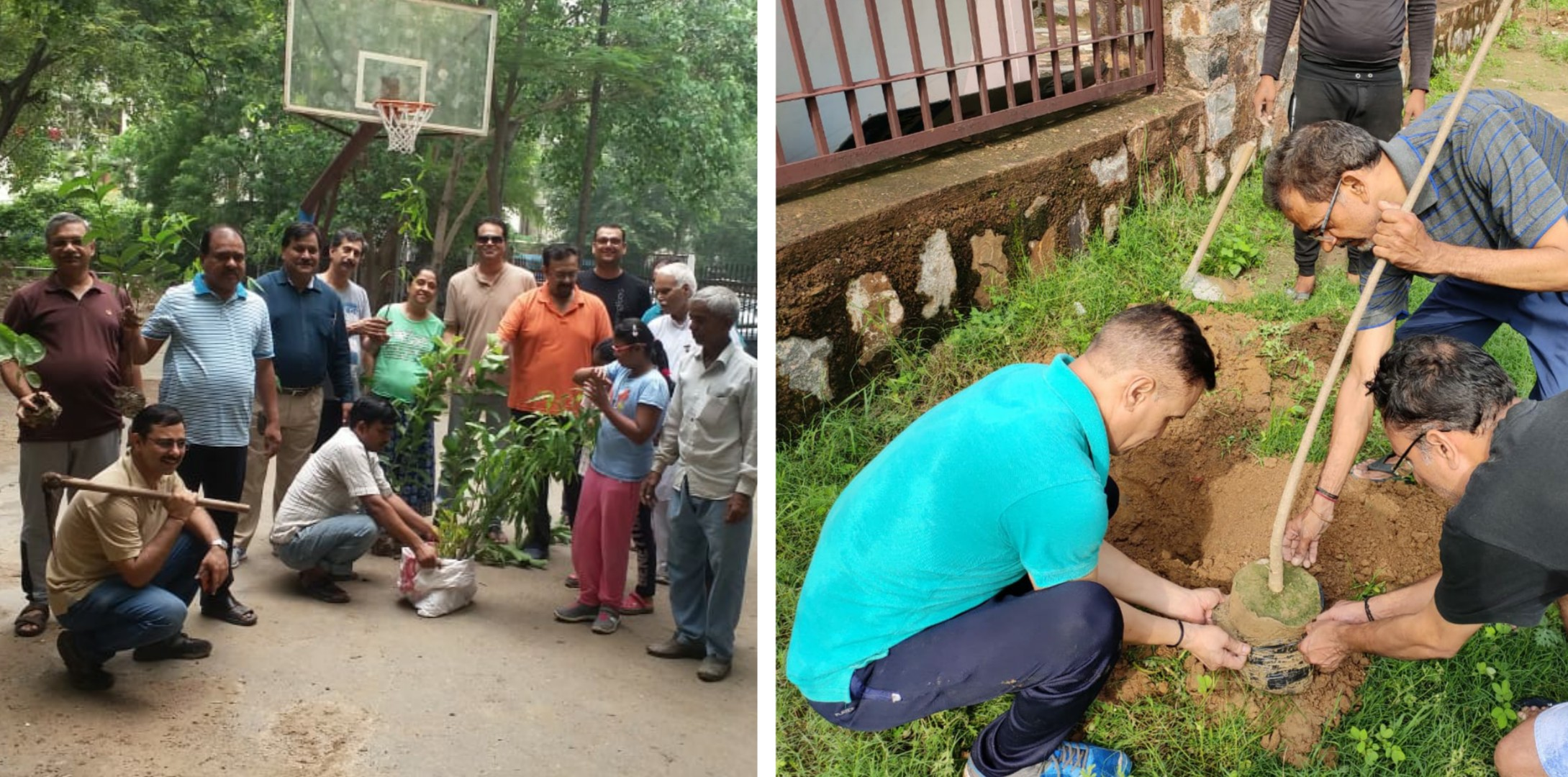 Dwarka residents carry out plantation drive
