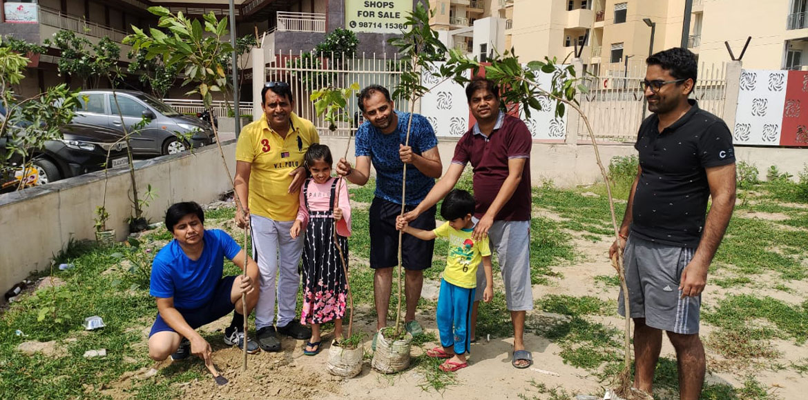 GreNo Green Foundation plants over 300 trees during three drives