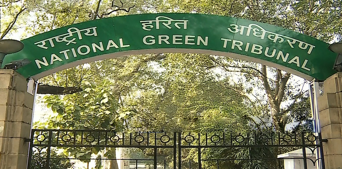 NGT asks UP government to take action against illegal garbage dumping in Loni