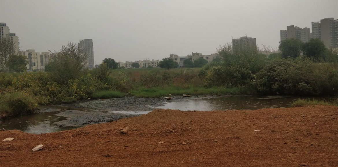 Illegal discharge of sewage water troubles Gurugram's sector 82, 83 residents