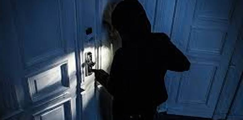 Burglars confess to working on a premeditated plan