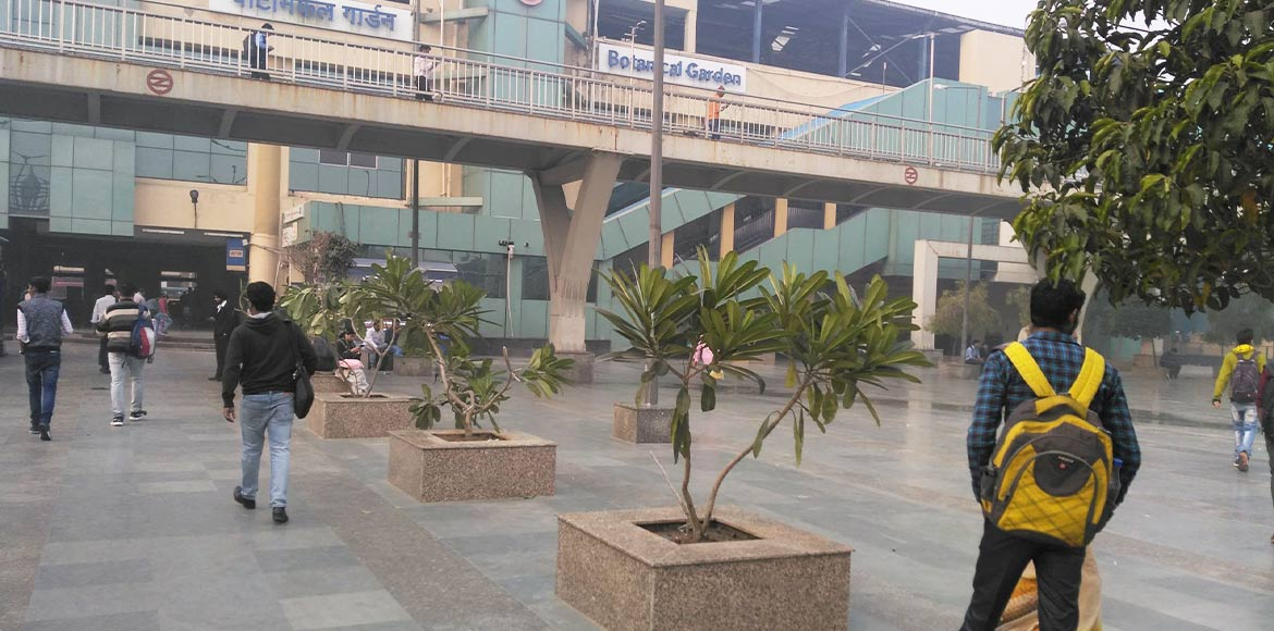 Noida: DMRC acts on complaints; plants trees to retain greenery at metro station