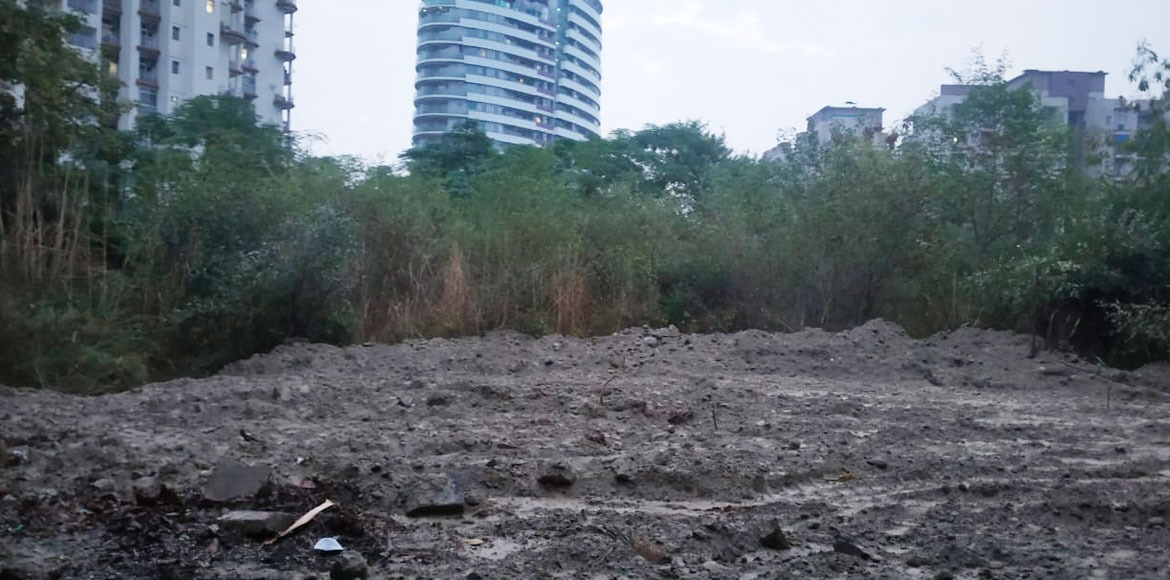 Noida: Garbage rotting for months at park cleared,