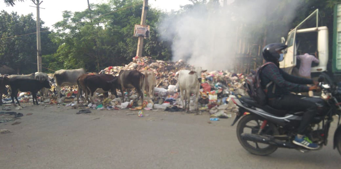 Gurugram: CPCB points rise in cases of open dumping, burning of garbage