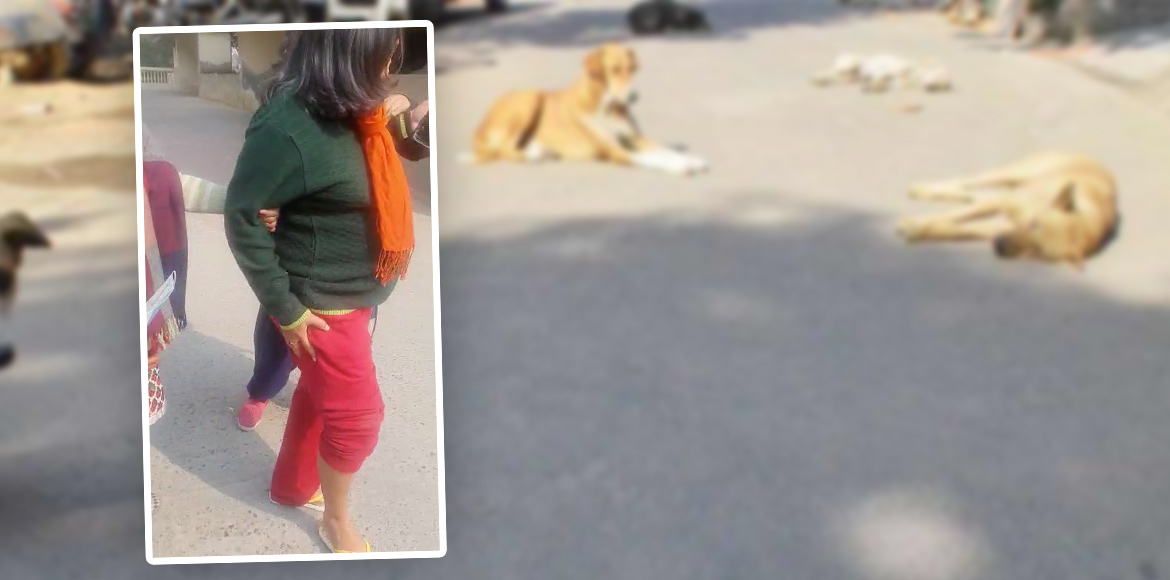 Pregnant woman badly injured in ambush of stray dogs at Shipra Krishna Vista