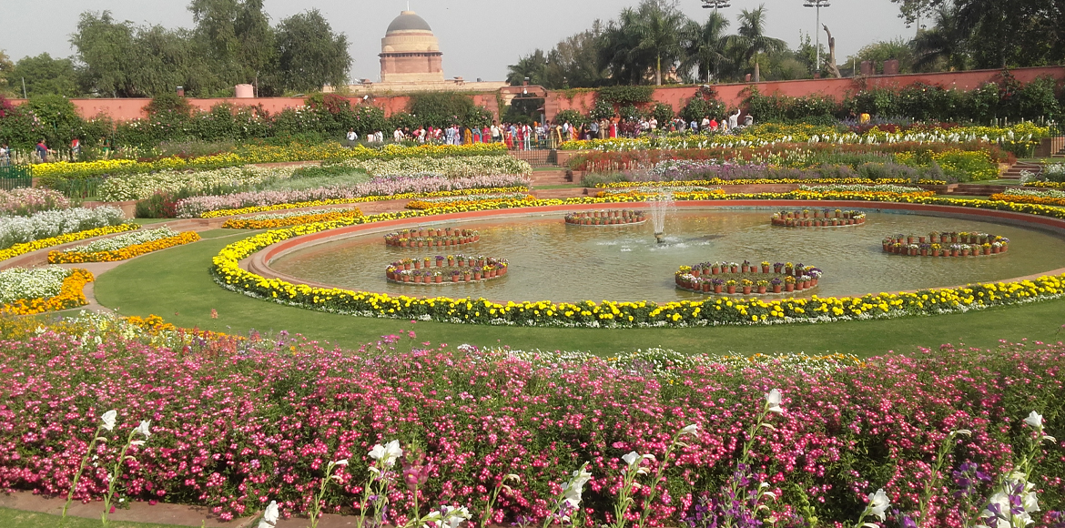 Mughal Gardens in full bloom beckons the general public