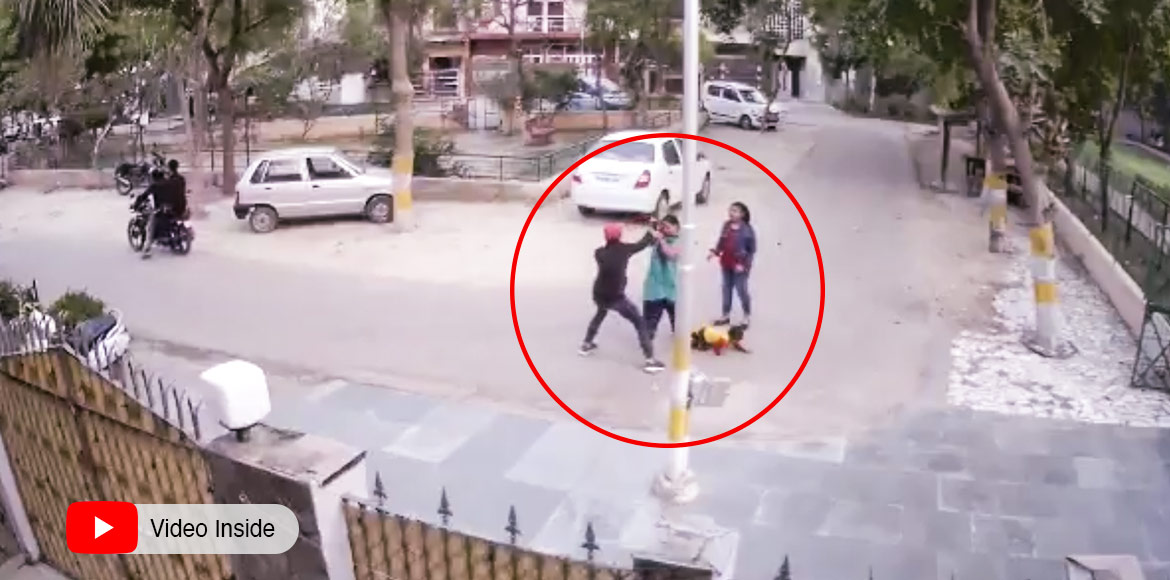 Video | Man attempts chain snatching on woman in broad daylight