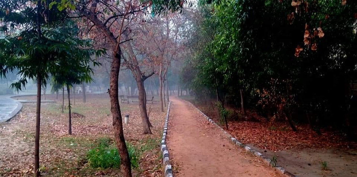 Proposal to set up laser-show at Meghdutam Park withdrawn after opposition