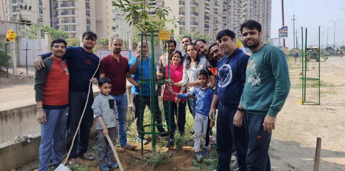 Gaur City: Green volunteers erect tree guards along with saplings