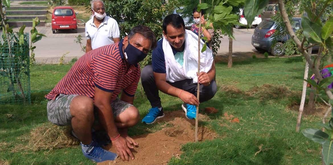 Mapsko Casa Bella residents plant saplings for monsoon season