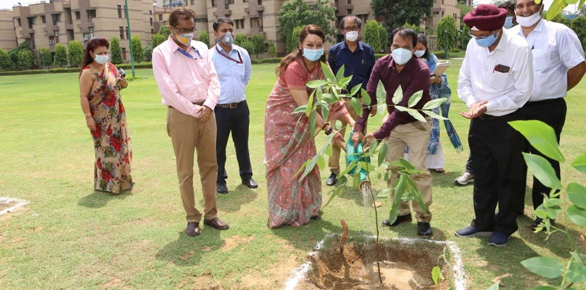 Dwarka: CCRT conducts tree plantation drive
