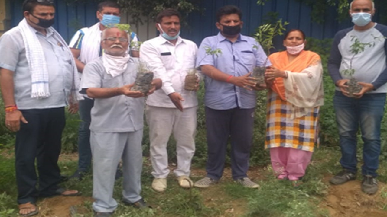 Indirapuram: Ek Lakshya society plants 1,500 saplings in a week