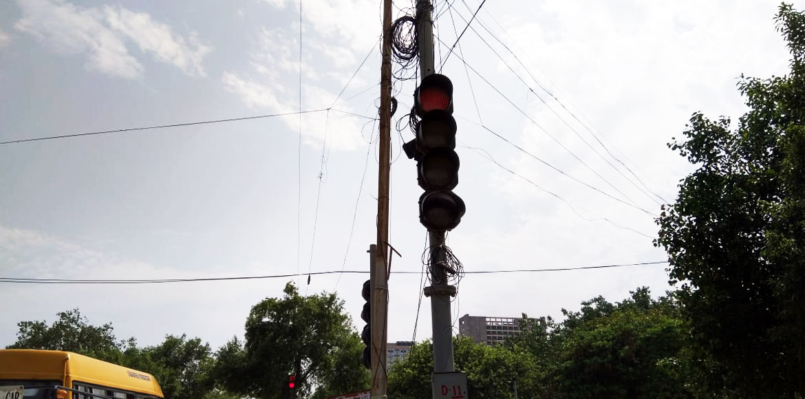 DDA warns action against illegal cables tied on trees in Dwarka