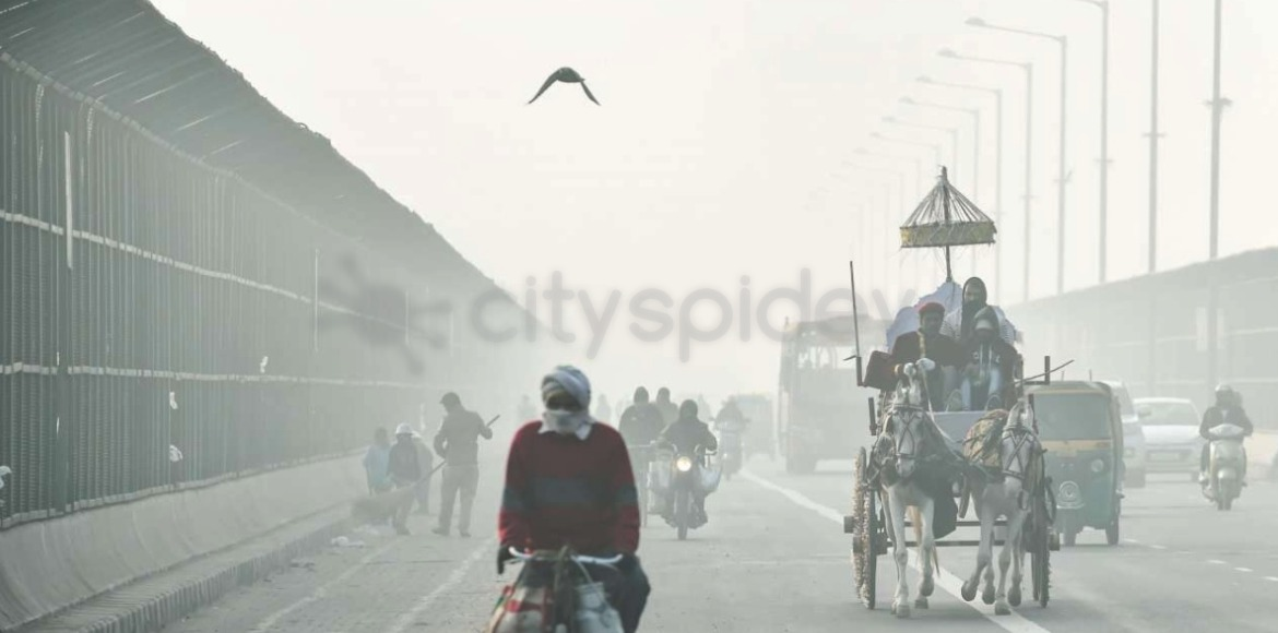 Delhi: Respite from cold wave as minimum temp rises to 5.5 degrees Celsius