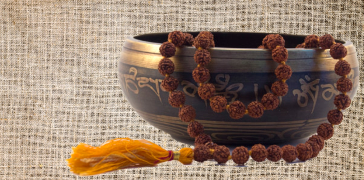 Maha Shivratri: Know science behind 'Rudraksha'