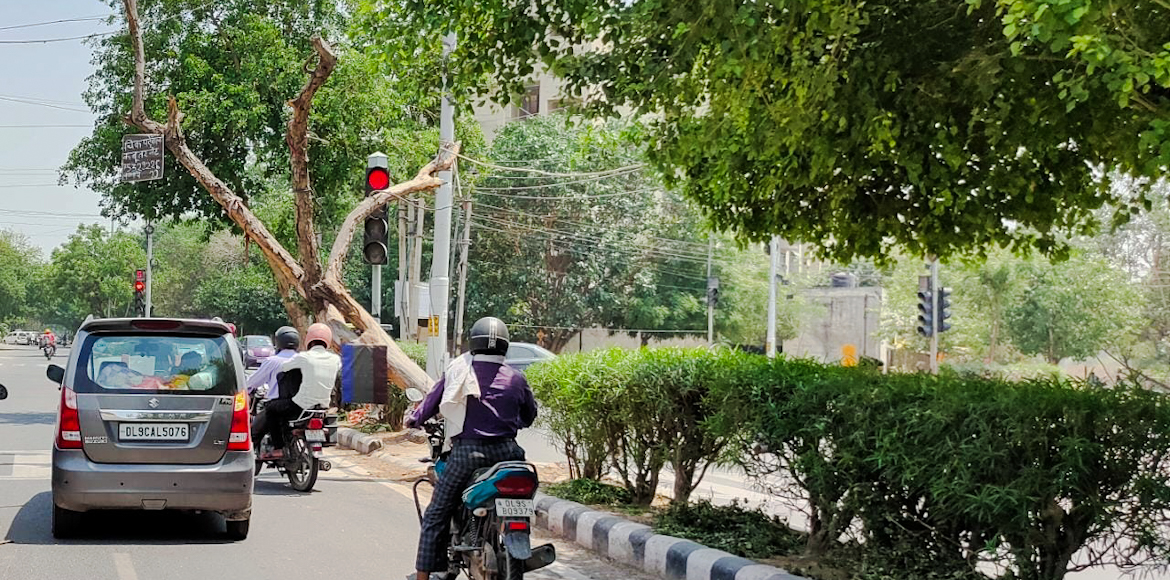 Tree inclined towards road poses threat to life of commuters