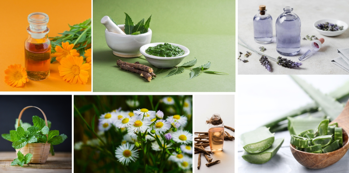 Nature's care for healthy & glowing skin