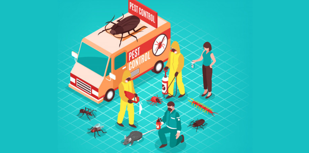 How to keep your home free from pests