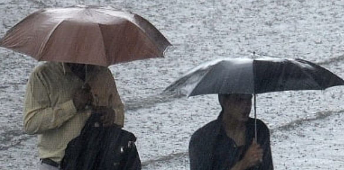 Light to moderate rain expected today, tomorrow