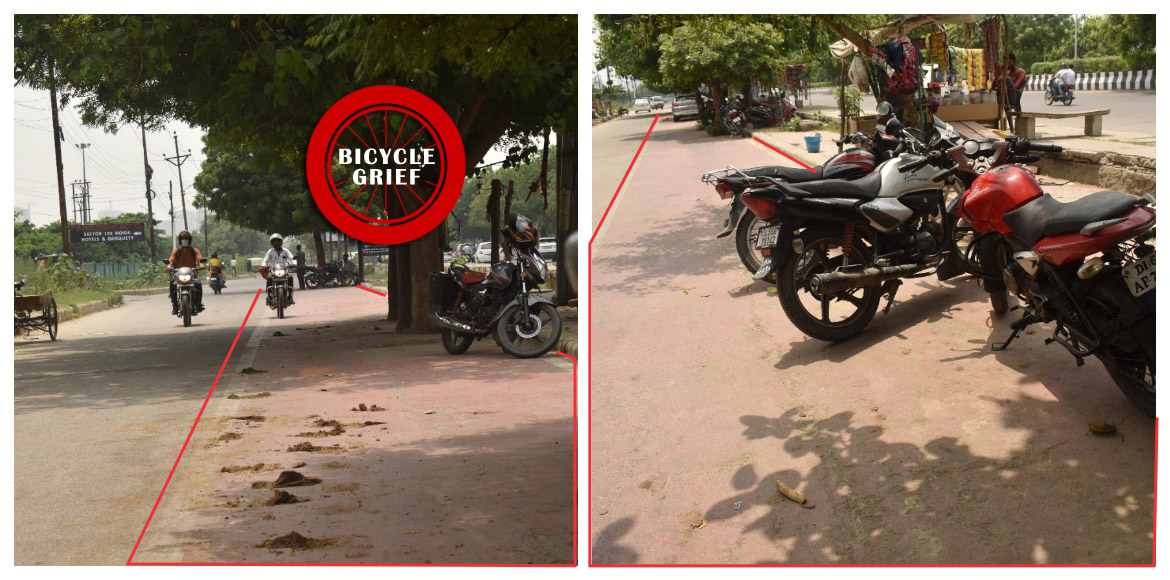 Trees, parked vehicles on cycle track in Noida