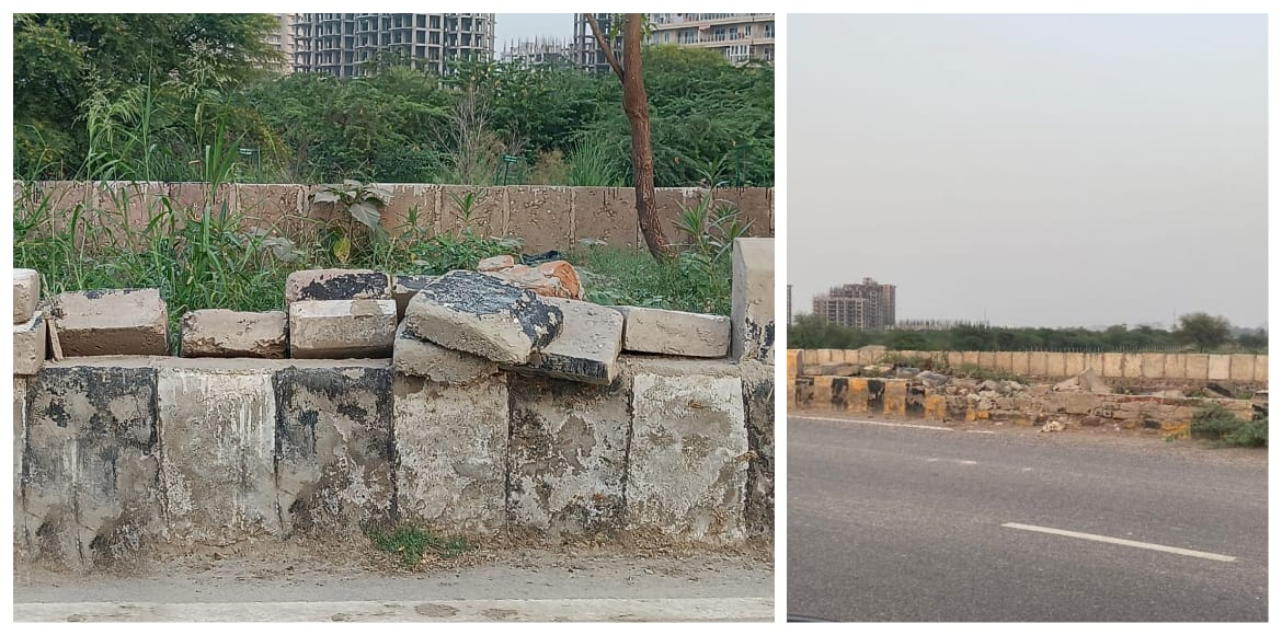 Noida: Central verge requires immediate revamp in