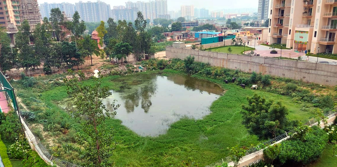 Gaur Saundaryam residents hassled due to wastewater accumulation in vicinity
