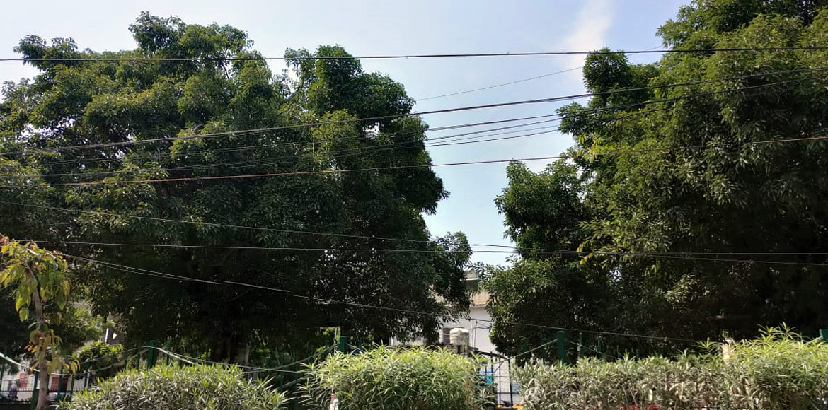 Hanging wires pose threat to commuters, pedestrian