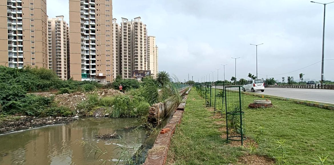 Noida: Sewer water pond a big cause of worry for S