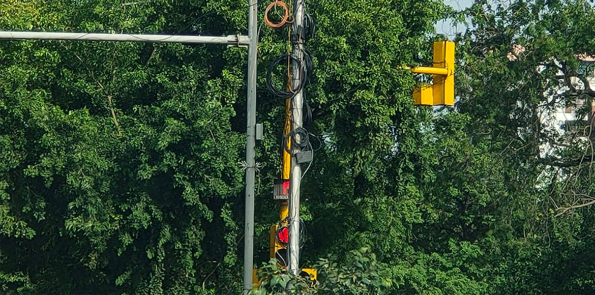 Overgrown trees covering traffic signals not a new phenomenon in Dwarka